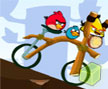 Jogo Online: Angry Birds Bike Revenge