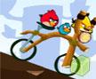 Jogo Online: Angry Birds Bike Revenge