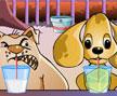Jogo Online: Dog Championship