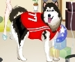 Jogo Online: Dogs at the Vet Dress Up