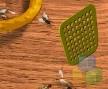 Jogo Online: Fly Swatter